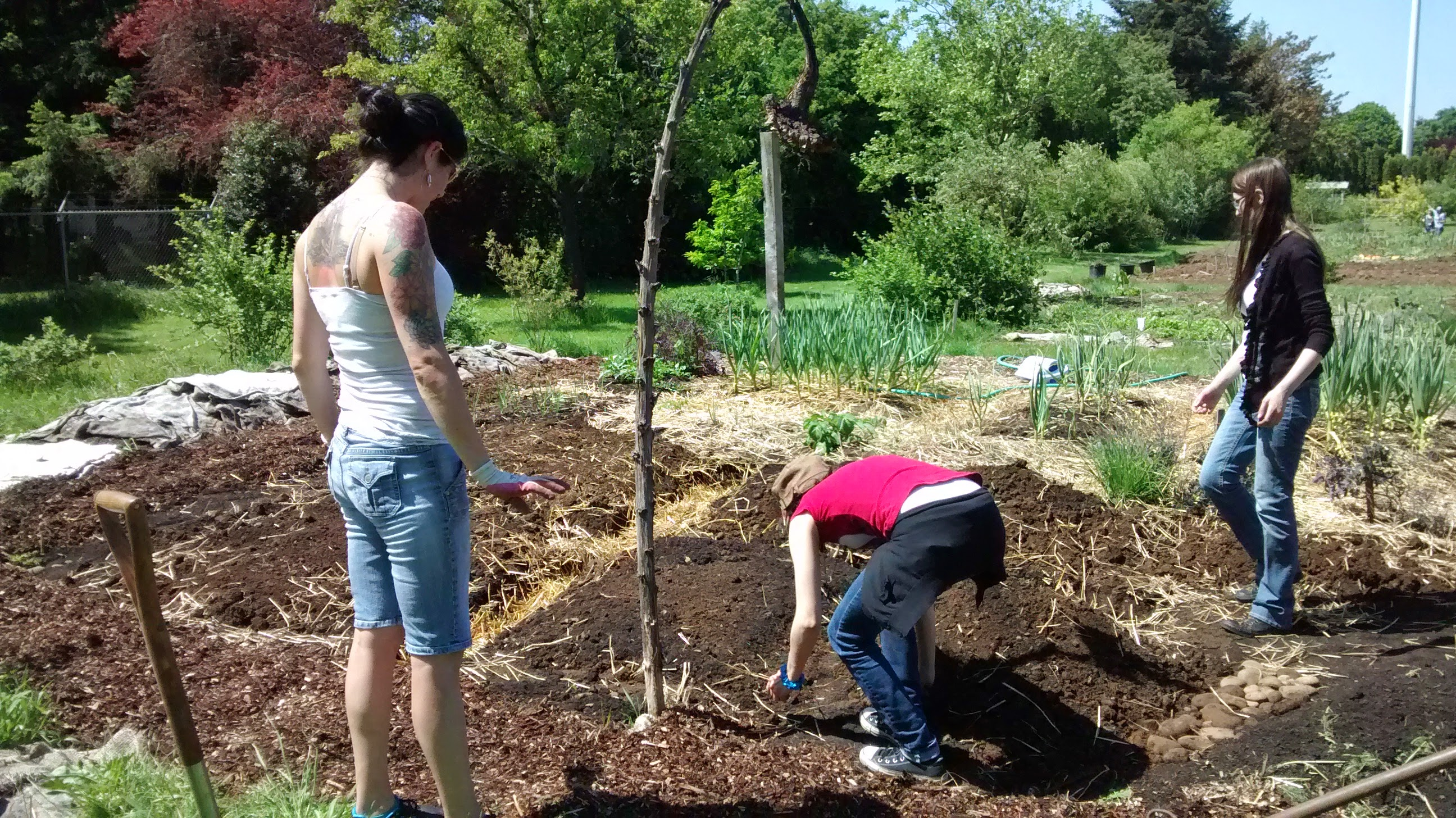 Permaculture leardning garden