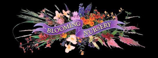 Blooming Nursery
