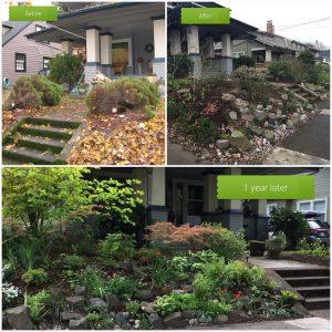 Common Sense Gardens backyard habitat certification